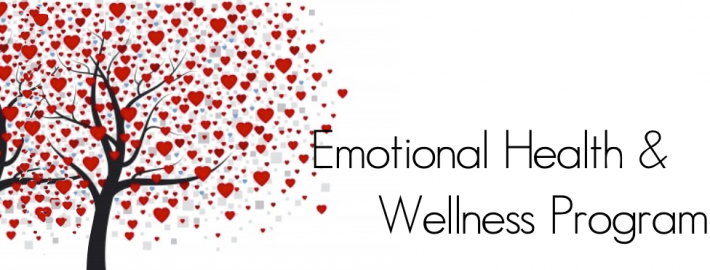 emotional health & wellness program