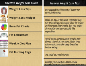 effective weight loss guide menu