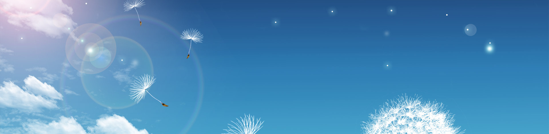 dandelion banner Beyond Good Health