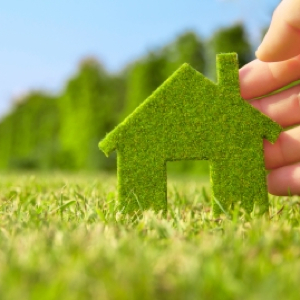 Healthy Living Tips to Detox Your Home