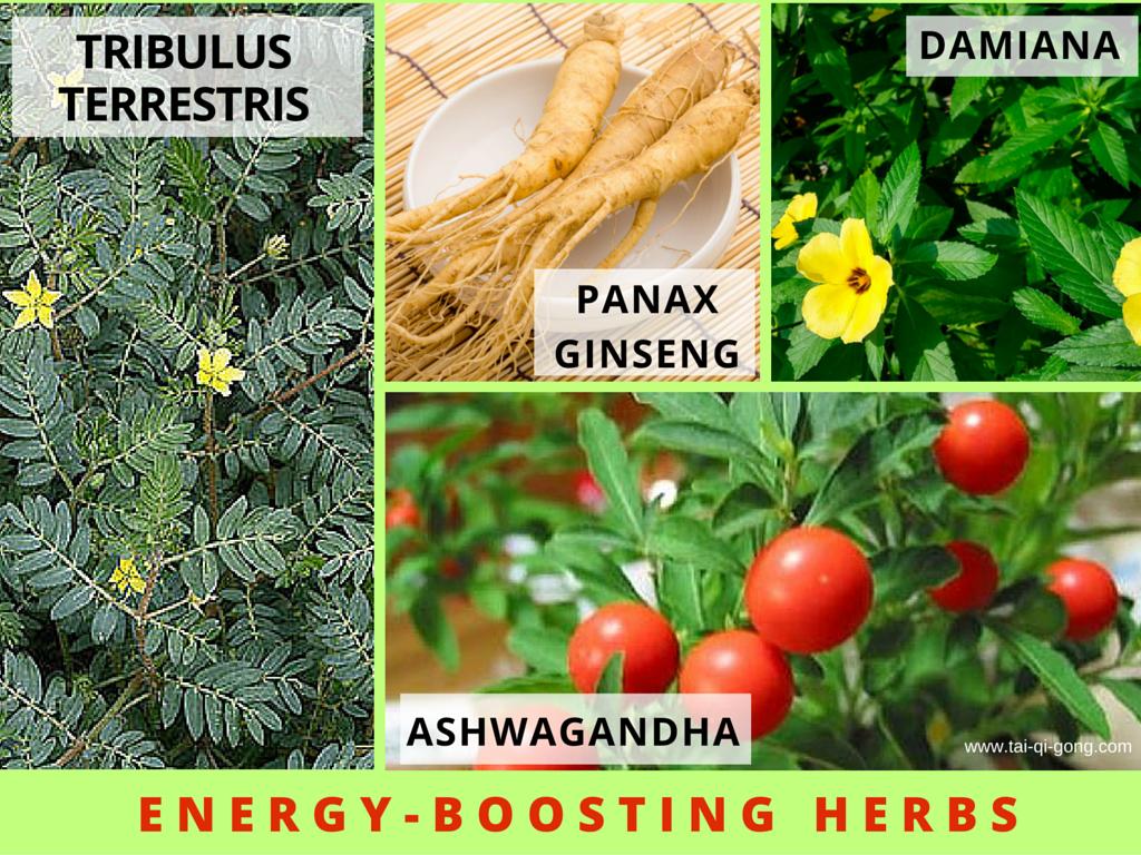 herbs energy boost alternative medicine practitioner brisbane
