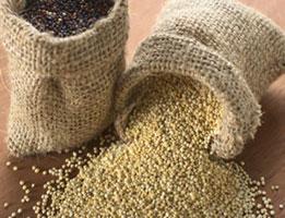 quinoa_energy boost-alternative-medicine-practitioner-brisbane