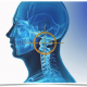 Neck-pain-atlas-vetebra-beyond-good-health