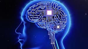brain-beyondgoodhealth
